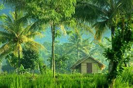 Ubud In Lombok