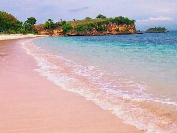Pink beach tour