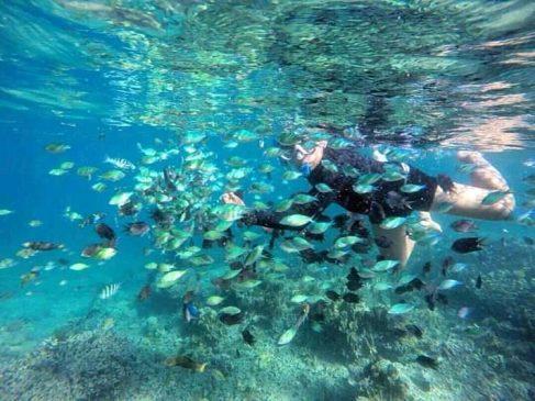 Snorkeling di Sekotong Barat