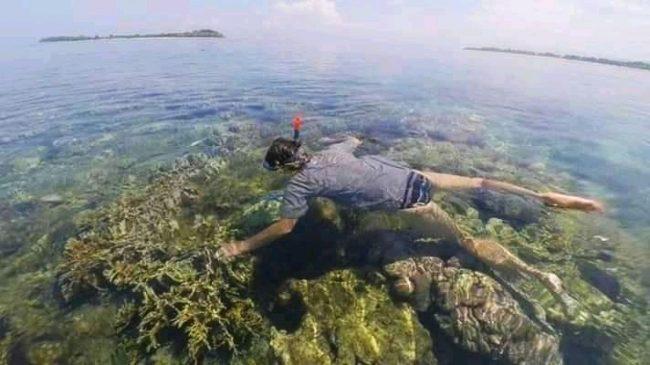 Snorkeling Gili Rengit