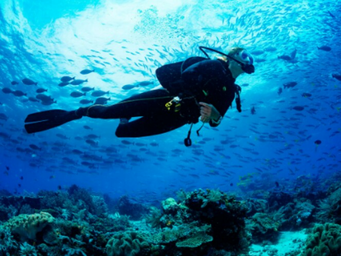 Lombok dive master